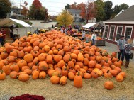 We've been to this farm stand many times. People are always buying pumpkins but the pile never gets any smaller.