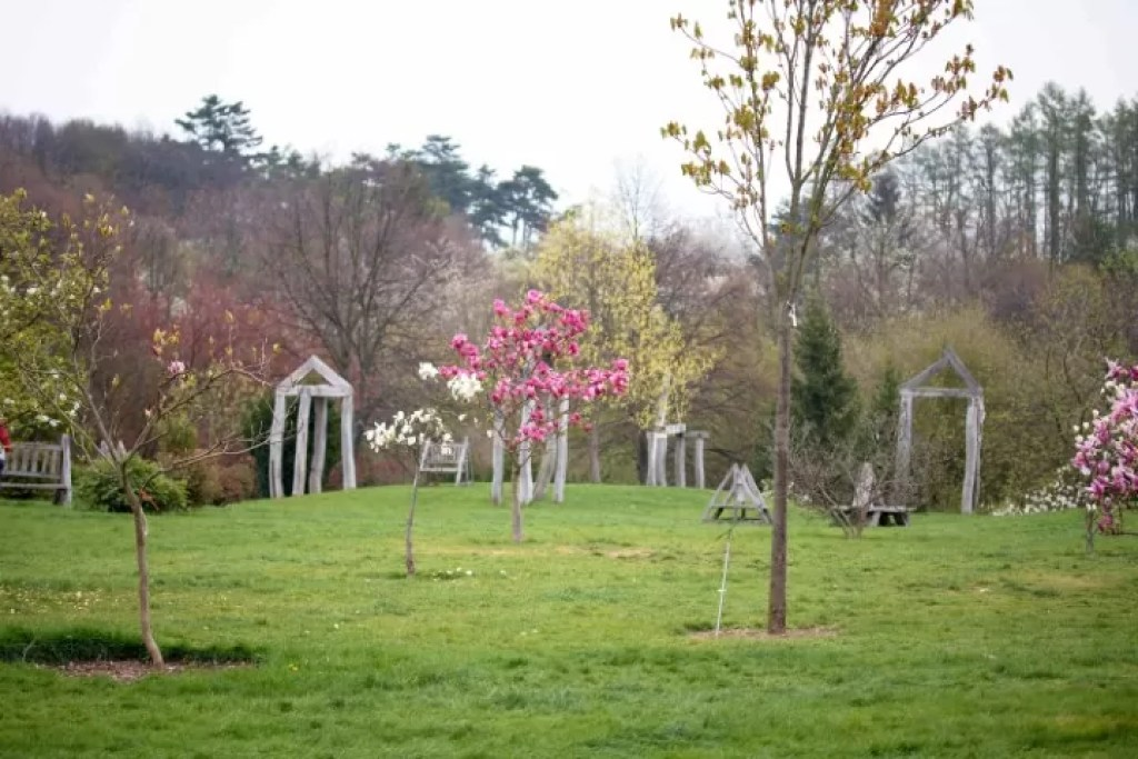 Large botanical garden with exotic flora in a greenhouse, a vineyard, beautiful views and a cafe is located in Troja