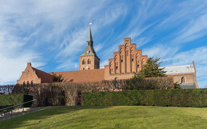 Odense (Denmark)
