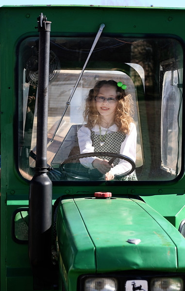 "Curly Kendra ""driving"" Kermit the Tractor"