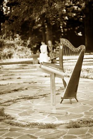Harp and Hammered Dulcimer