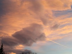 The Sky Above