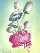 Mushroom Larvae
