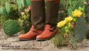 Cactus Rose Snakeboots