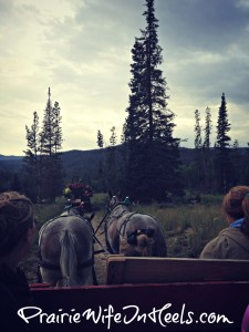 wagon ride