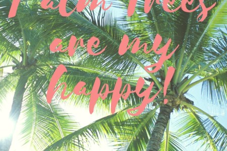 palm trees are my happy