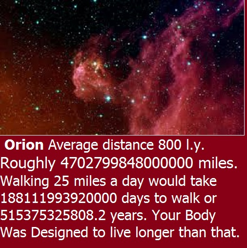 you can live for ever,orion