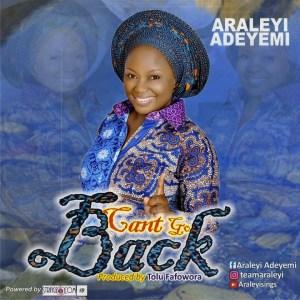 Araleyi - Can't Go Back