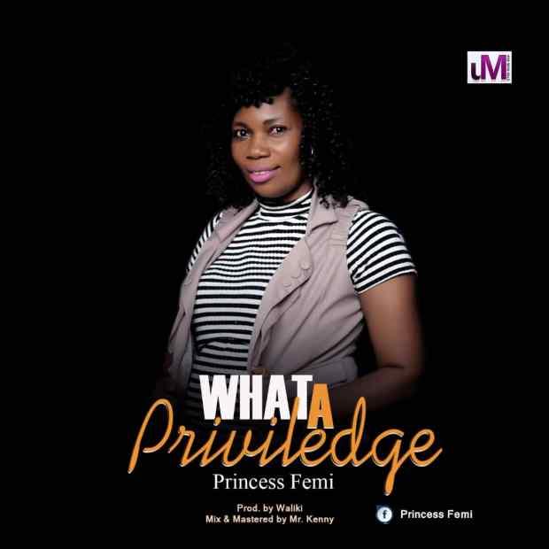 Princess Peace - What A Privilege