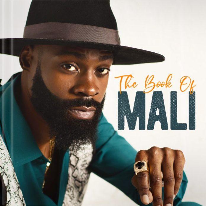 Mali Music ||Cry || Praizenation.com