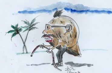 circulars on coconut, cartoon by Ajith Perakum Jayasinghe