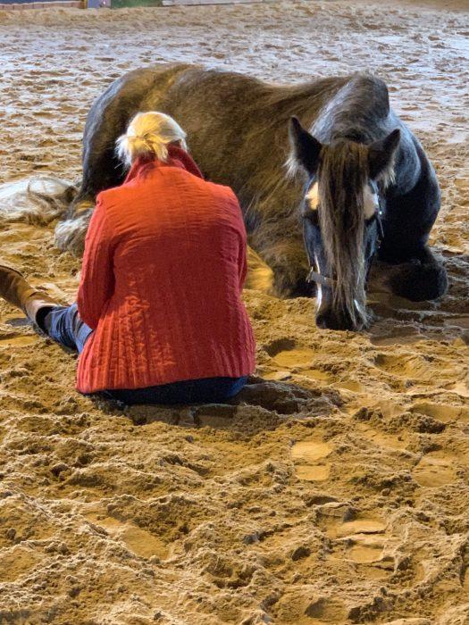 Coaching met paarden; een unieke manier van naar binnen kijken