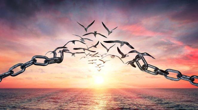 vergeving maakt vrij