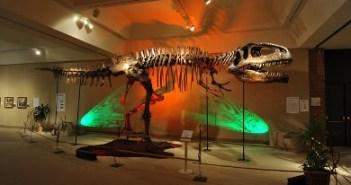 Δεινόσαυροι της Παταγονίας στο Γουδή