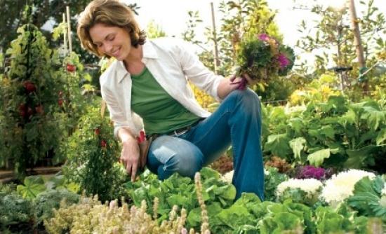 κηπουρική-μαστορέματα-υγεία