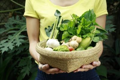 ερασιτέχνης κηπουρός - tips