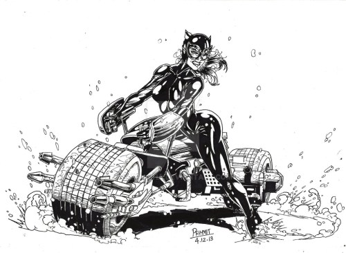 Catwoman Rises by Pramit