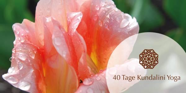 40 Tage Kundalini Yoga