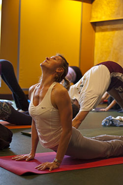 Photo: yoga class in Rockville MD