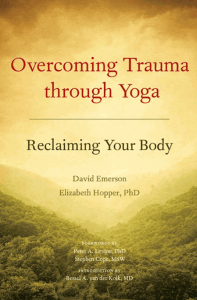Photo: cover art of book on yoga and trauma