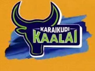 Tamil Nadu Premier League (2016) Predictions