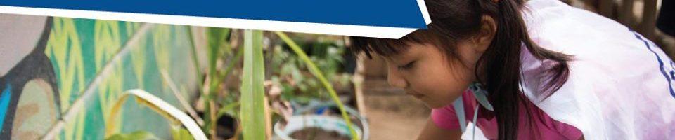 Diplomado de postgrado»Diversidad Biocultural y Opciones Tecnológicas en Ciudades Conviviales».