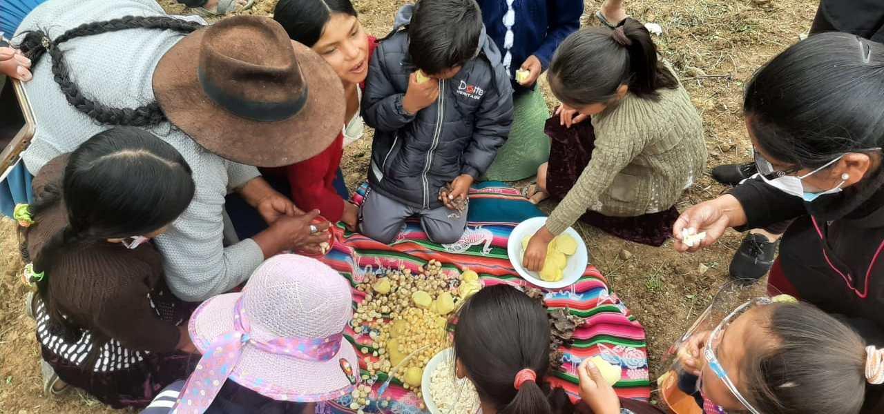 Bolivia: Realizan conversatorios sobre prácticas tradicionales de crianza de semillas en comunidades de Tarabuco