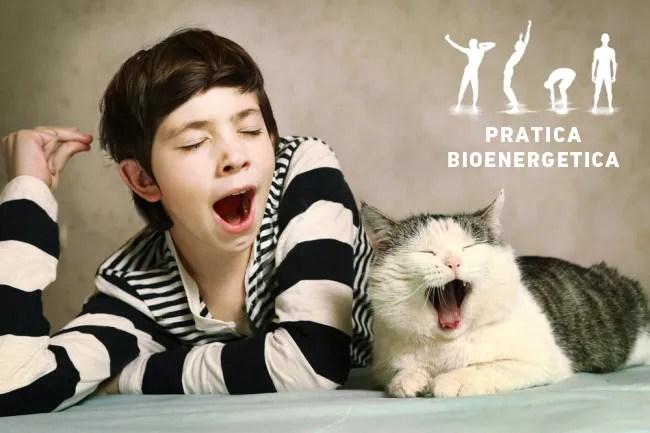 Sbadiglio-contagioso-uomo-gatto-pratica-bioenergetica