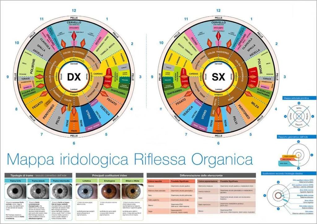 mappa-iridologica-pratica-bioenergetica