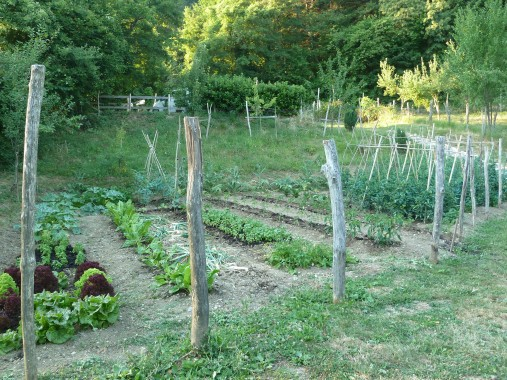 the vegetable patch tended by Mario, Illaria's father-in-law