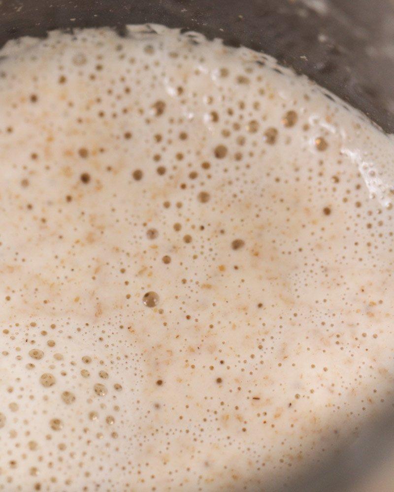 Dia 8: superfície do fermento com muitas bolhas mais uniformes e pequenas.
