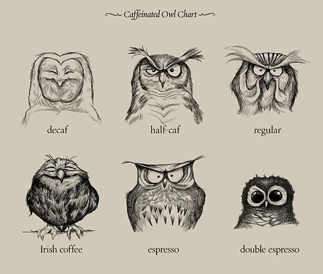 Corujinhas Cafeinadas