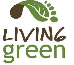 easy ways to live an eco friendly life
