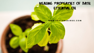 Healing benefits of basil essential oil