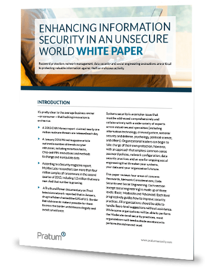 Database Security Essay