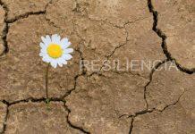 resiliencia principal
