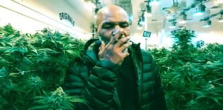 Mike Tyson destacada