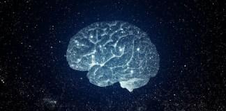 Galaxias, cerebro, Franco Vazza, Alberto Felerri, Universidad de Verona, Universidad de Bolonia, red de galaxias, red de células, científicos, similitudes cerebro y galaxia, densidad espectral