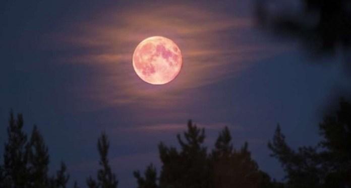 superluna rosa, luna rosa, luna llena rosa, eventos astronomicos abril, eventos astronomicos 2021, luna llena azul, cuando sera luna llena, lunas llenas del año, ver luna rosa,