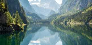 Reserva natural, convertir a la mitad del mundo en reserva natural