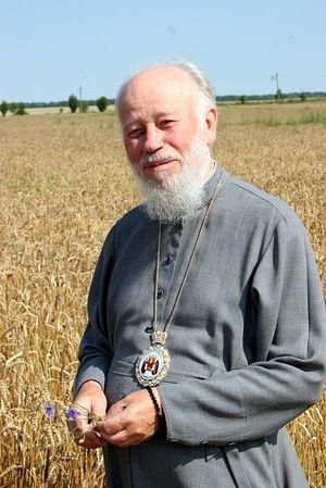 Митрополит Киевский и всея Украины Владимир (Сабодан)