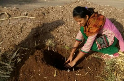 Tree plantation in progress by the Prayas member, June 2017