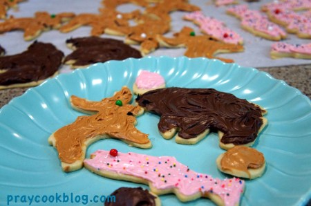 moose bear salmon cookies