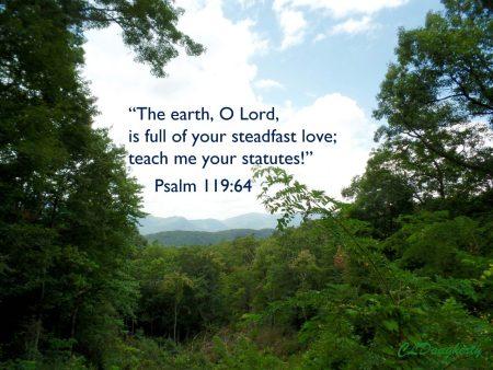 Psalm 119-64 Smokey MT