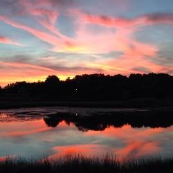 Silence at Dawn Stacy Waldman Bass