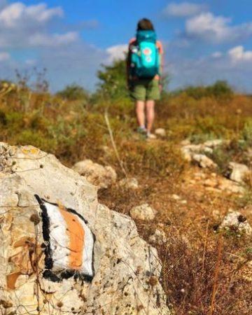 Israel - Jesus Trail / Holy Land