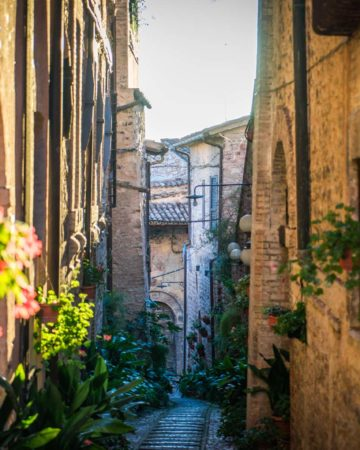 Italy - Way of St. Francis