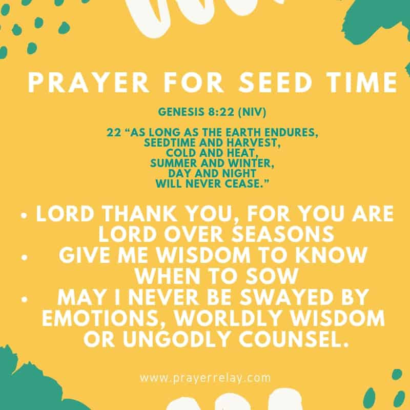 prayer points for sowing seed