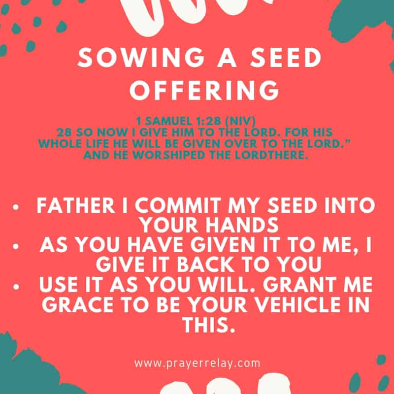 SOWING A SEED OFFERING