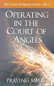 Court of Angels-cover-300x188